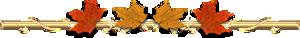 0_46b06_efd0cf09_M (300x38, 16Kb)