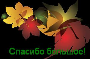 oie_5qtKXUU5TK1k (300x196, 51Kb)