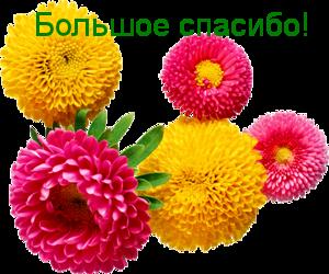 oie_c1VeDgU58H3j (300x250, 143Kb)
