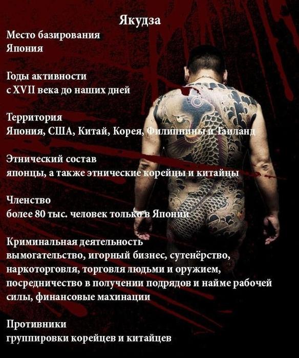 fakty_o_jakudze_11_foto_1 (584x700, 291Kb)