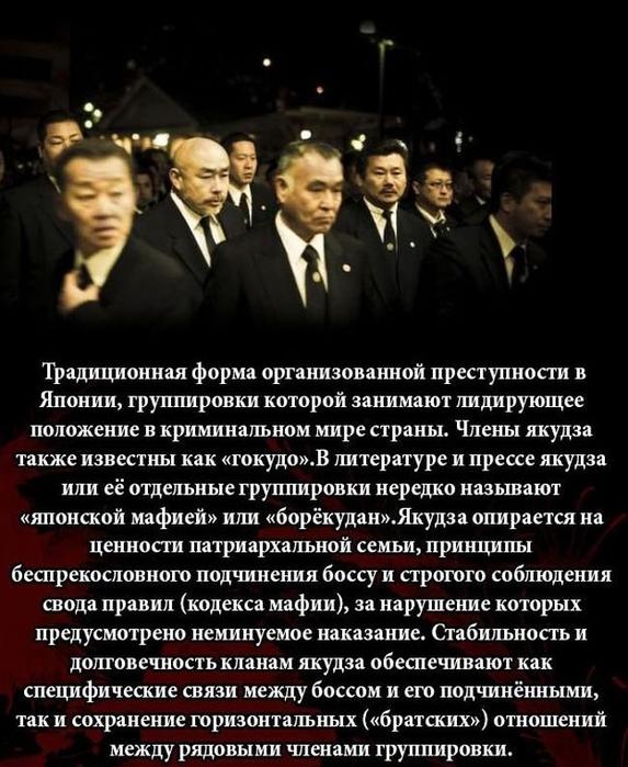 fakty_o_jakudze_11_foto_2 (573x700, 251Kb)