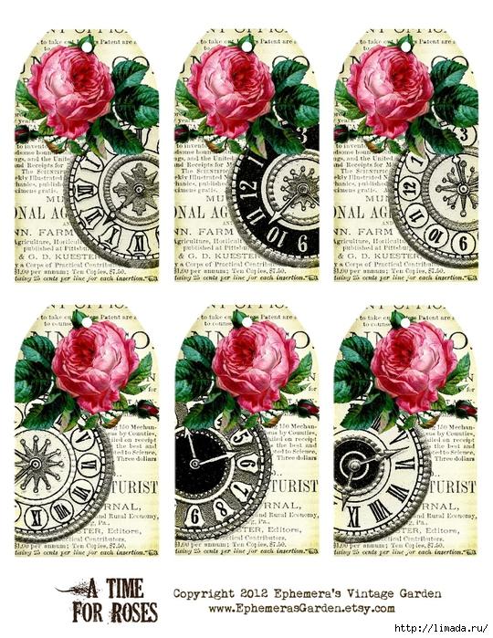 TimeForRoses (540x700, 402Kb)
