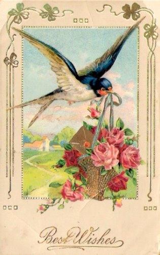 BirdBasket (315x500, 112Kb)