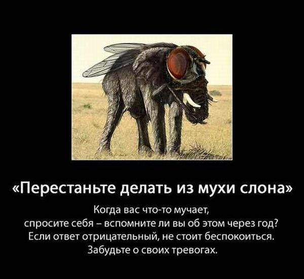 5107888_Stimka_ru_1326017163_sovet002 (600x551, 45Kb)