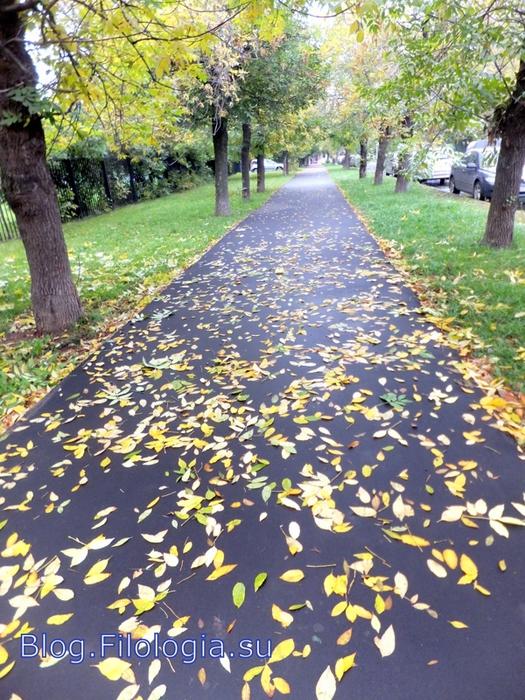 Осень в городе. Осенняя аллея с листьями/3241858_osen06 (525x700, 358Kb)