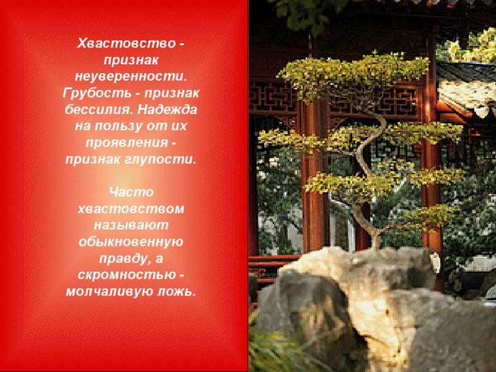 3925311_Viskazivaniya_kitaiskih_mydrecov12 (700x525, 677Kb)