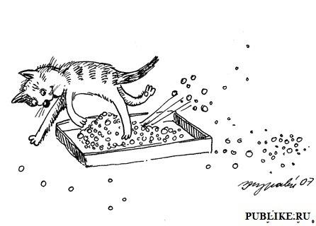 Наполнитель для кошачьего туалета/4645991_gigiena (446x320, 31Kb)