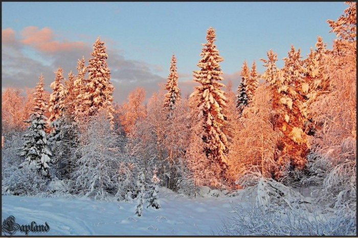 зима 15 (700x466, 395Kb)
