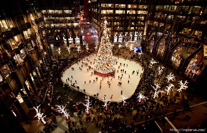 Beautiful-Christmas-trees-around-the-world-_-www.pixanews-11 (700x450, 383Kb)