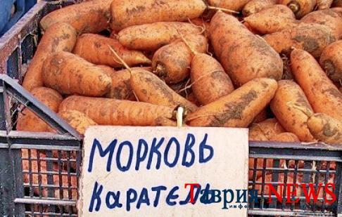 1419315698_morkov (486x309, 182Kb)
