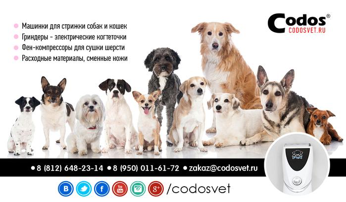 CODOS - Машинки для стрижки животных/1302958_codos_ad_08 (700x408, 205Kb)