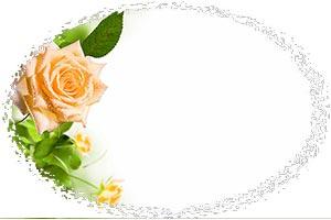 Без-имени-1.jpg-р.jpg-роза-неж (300x200, 10Kb)