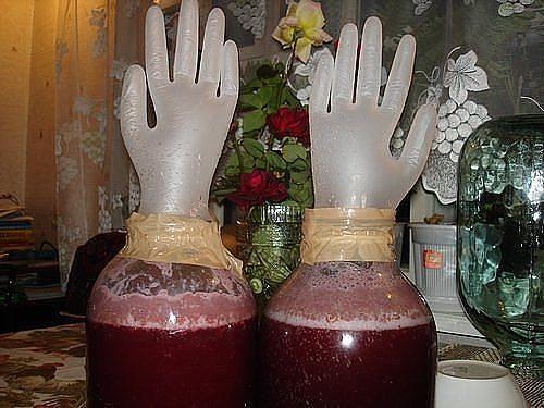 вино (500x375, 52Kb)
