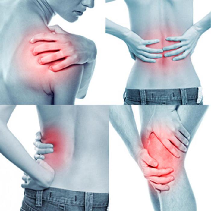 народные средства для лечения с.болей в спине и суставах, /4682845_mka6SFHOg6 (700x700, 54Kb)