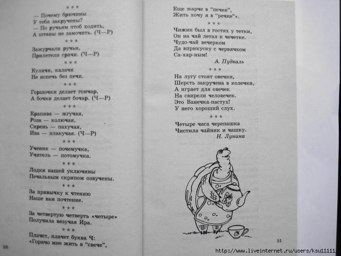 500_stishkov_dlya_zaryadki_yazychkov.page27 (700x525, 211Kb)