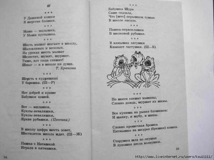 500_stishkov_dlya_zaryadki_yazychkov.page29 (700x525, 212Kb)