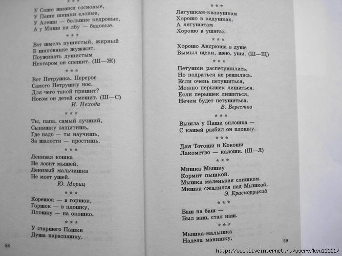 500_stishkov_dlya_zaryadki_yazychkov.page31 (700x525, 218Kb)
