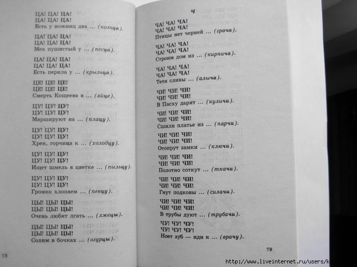 500_stishkov_dlya_zaryadki_yazychkov.page41 (700x525, 203Kb)