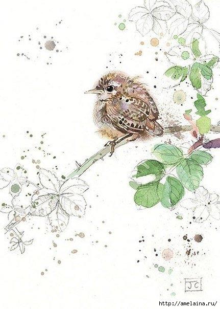 Милые рисунки  Jane Crowther1 (431x604, 146Kb)