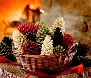 pinecones (300x257, 162Kb)