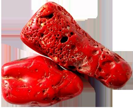 камень-коралл (405x301, 200Kb)