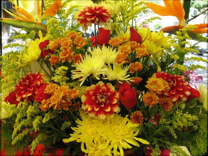 цветы осени 1 (700x525, 574Kb)