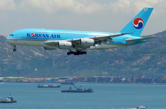 Российские спортсмены устроили дебош в самолете по пути в Южную Корею