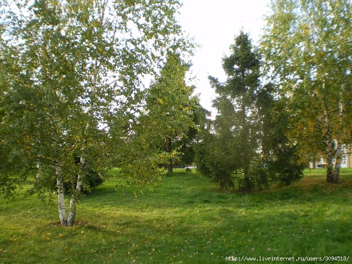 Парк Мытищи 027 (700x525, 440Kb)