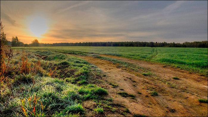 Дорога в поле озимых/3673959_14 (700x393, 117Kb)