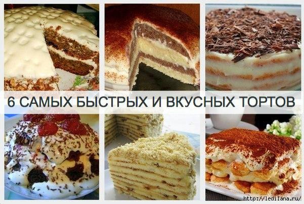 3925311_6_tortov (601x404, 181Kb)