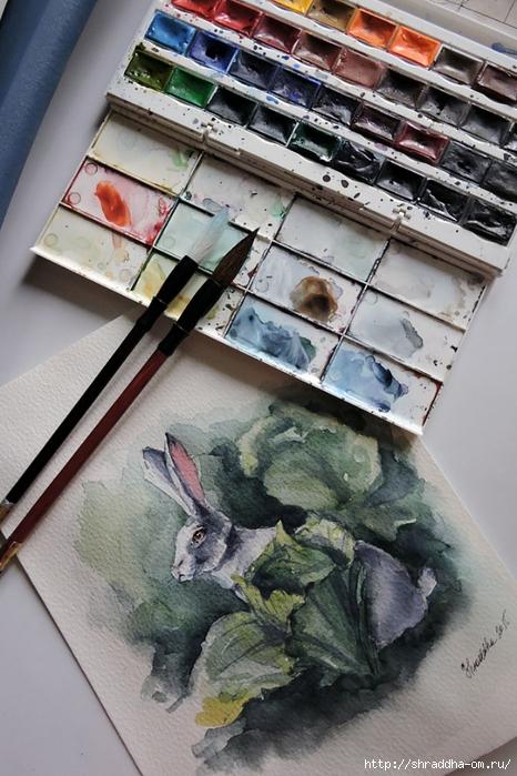 акварель Кролик в капусте от Shraddha (1) (466x700, 287Kb)