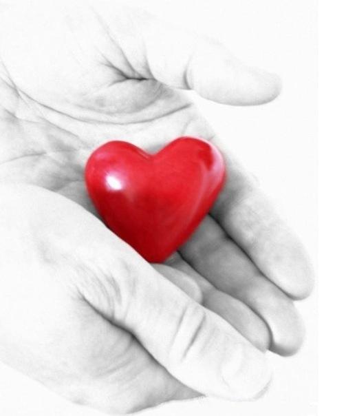 сердце продается (503x604, 83Kb)