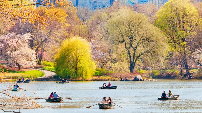 central-park-NY (700x393, 531Kb)