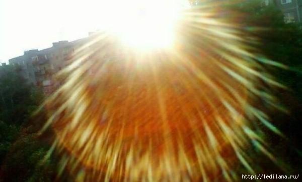 3925311_lychi_solnca (600x363, 84Kb)