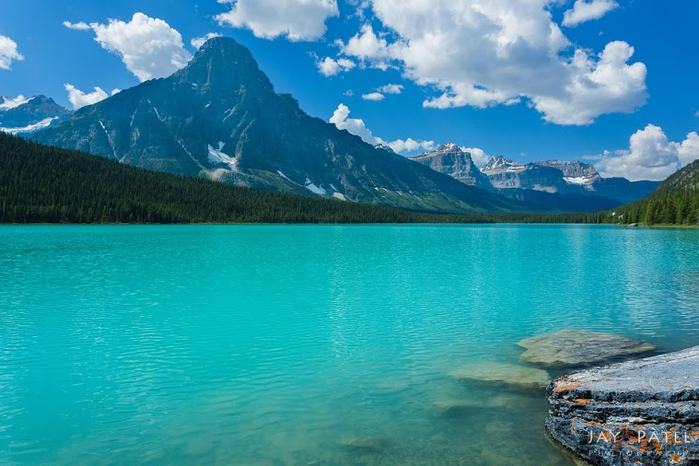 Canada_2013_Waterfowl_5641 (700x466, 368Kb)