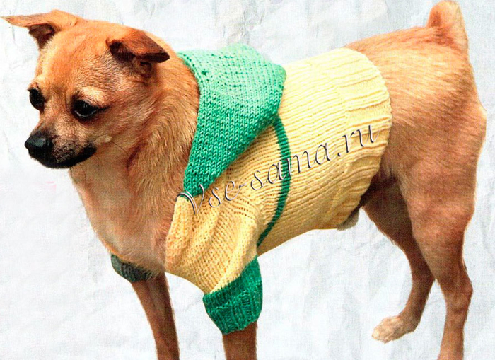 Sportivnyi-pulover-s-qapiushonom-ris (700x509, 442Kb)