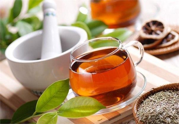 Важные правила травяного чая (604x418, 52Kb)