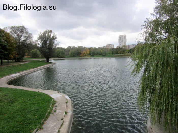 Пруд в парке Дружба осенью.(700x525, 75Kb)