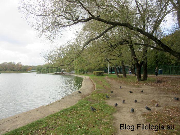 На берегу пруда в парке Дружба на Речном вокзале. (700x525, 86Kb)