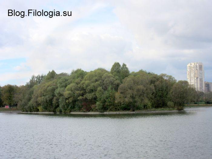 Лесной массив на острове в парке Дружба в Москве.  (700x525, 44Kb)