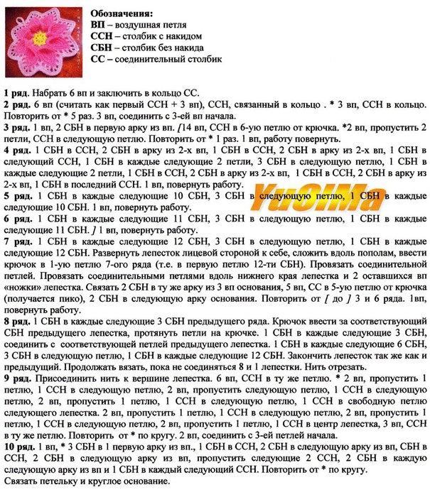 Bq6gslIdFvE (605x700, 174Kb)