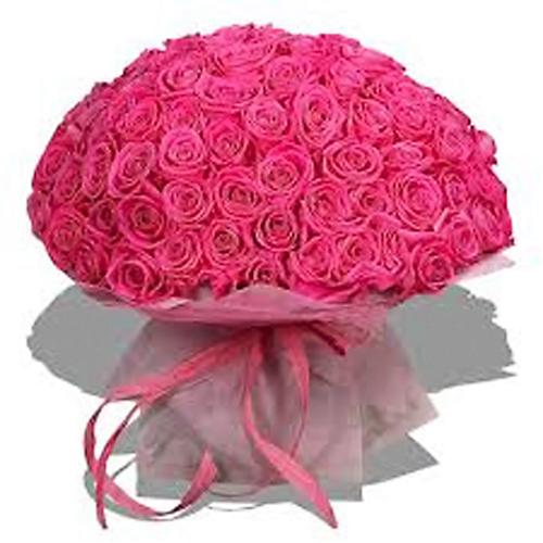 pink101-500x500 (500x500, 223Kb)