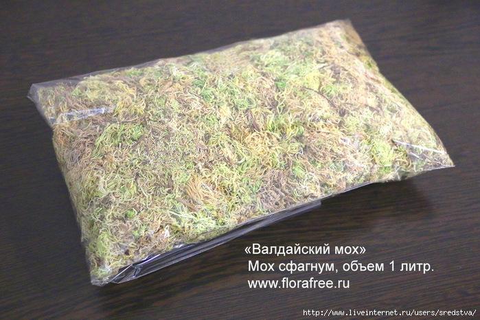 декоративный мох, мох для оформления, оформление мхом, мох сфагнум купить, мох ягель, болотный мох   купить, купить мох, для чего мох сфагнум, мох сфагнум использование, для орхидей, как смешивать землю для   орхидеи,/3041158_IMG_8709_01 (700x466, 285Kb)
