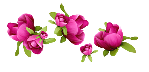 Bon Mercredi 125635786_Spring_Flowers_Decoration_PNG_Clipart