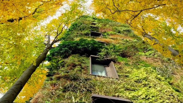 зеленые здания Oas1s 4 (700x393, 436Kb)