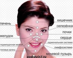 Морщинки-на-лице-помогут-определить-характер-человека (288x229, 27Kb)