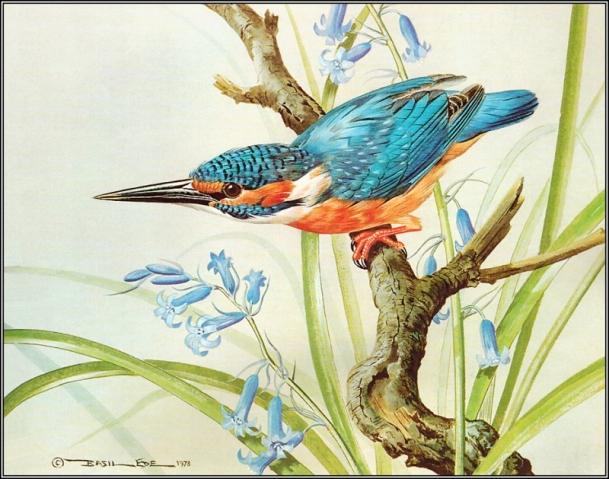 птицы (609x479, 337Kb)