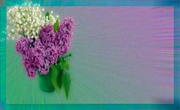 ландыши-сирень-букет-п (257x158, 55Kb)