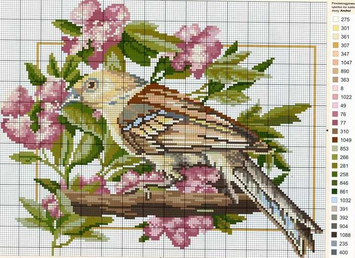 Вышивка крестом птицы на цветах 465