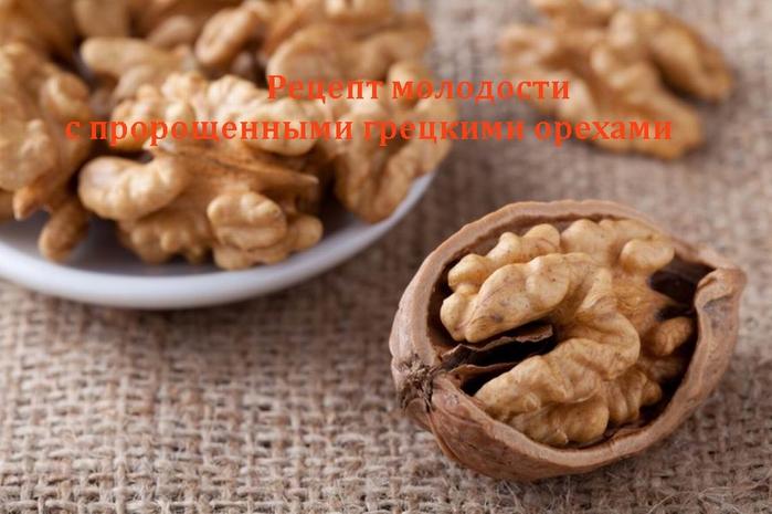 alt=Рецепт молодости с пророщенными грецкими орехами/2835299__1_ (700x465, 219Kb)